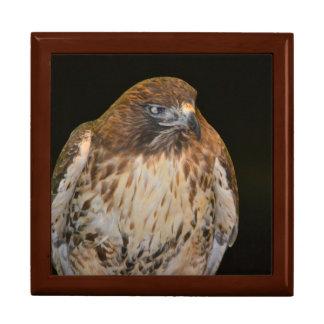 Spirit Of the Hawk Keepsake Box