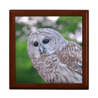 Spirit Of The Owl Gift Box