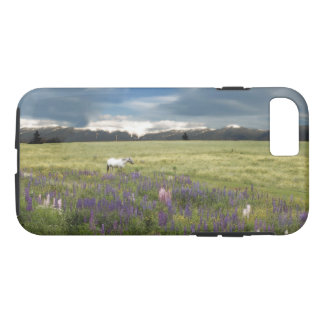 Spirit Pony in HighCountry Lupine Field Phone Case