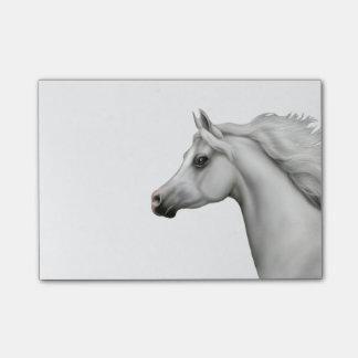 Spirited Grey Arabian Horse Post-it Notes