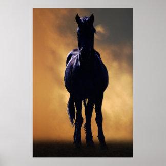Spirited horse poster