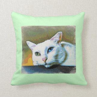 Spirit's 2-faced pillow #2