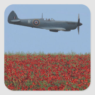 Spitfire and Poppies Square Sticker