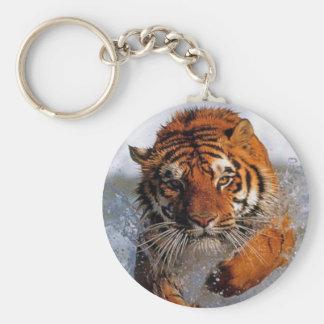 Splashing Majestic Bengal Tiger Swim Toward Prey Basic Round Button Keychain