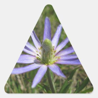 Splayed flower sticker