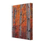 Splendeur d'automne impressions sur toile
