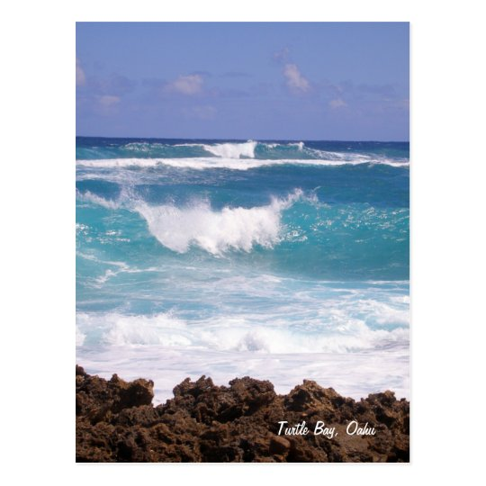 Splish Splash Postcard