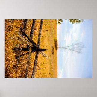 Split Rail Golden Field Poster
