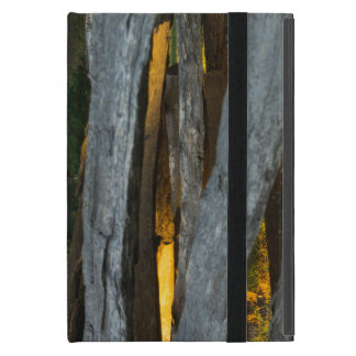 Split Rail Texture Cover For iPad Mini