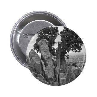 Split Tree Button