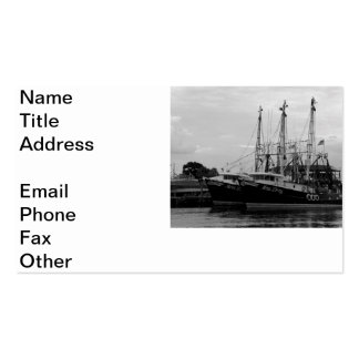 Sponge Sisters 2 Pack Of Standard Business Cards