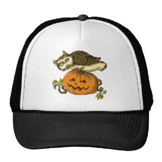 Spooky owl Halloween pumpkin Mesh Hats