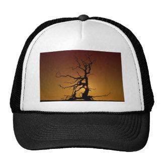 Spooky Tree Hat