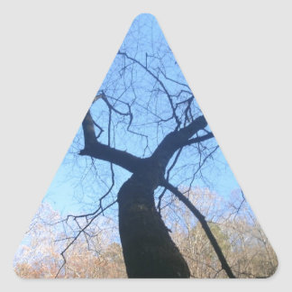 Spooky Tree Triangle Sticker