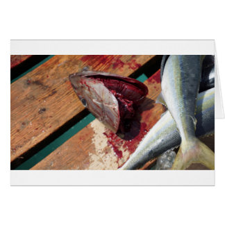 sport fishing card