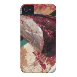 sport fishing iPhone 4 covers