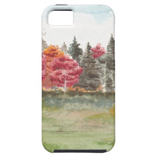 Sportplatz Birkenwäldchen iPhone 5 Cases