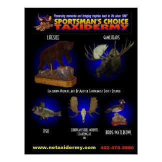 SPORTSMAN S CHOICE TAXIDERMY POSTER