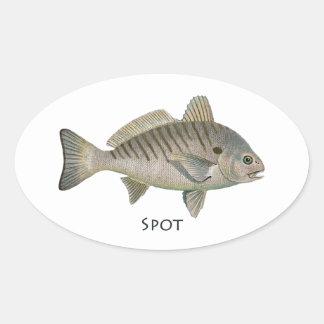 Spot Fish Oval Sticker