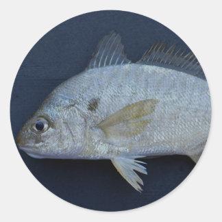 Spot Fish Round Sticker