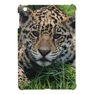 Spot iPad Mini Cover