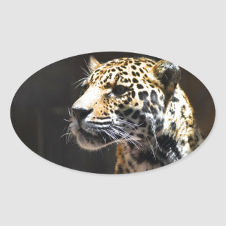 Spots and Shadow Oval Sticker