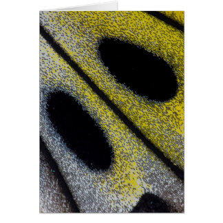 Spotted and yellow butterfly wing card
