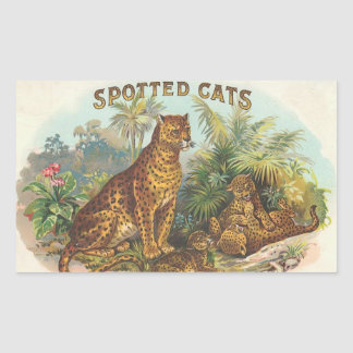 Spotted Cats
