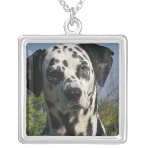 Spotted Dalmatian Dog Necklace
