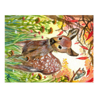 Spotted Deer And Little Bird Postcard