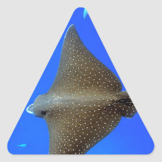 Spotted eagle ray & reef shark underwater triangle sticker