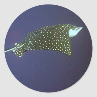Spotted Eagle Ray Round Sticker