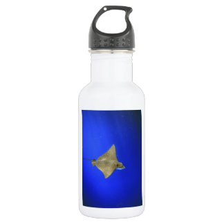 Spotted eagle ray swimming underwater Galapagos 532 Ml Water Bottle