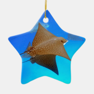 Spotted eagle rays underwater Galapagos Ceramic Star Ornament