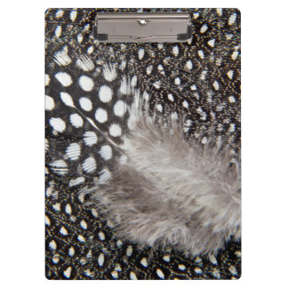Spotted Guinea fowl feather Clipboard