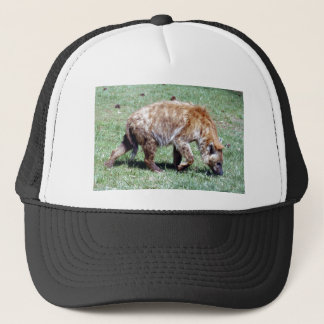 spotted hyena4x6 trucker hat