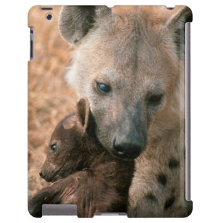 Spotted Hyena (Crocuta Crocuta) With Pup