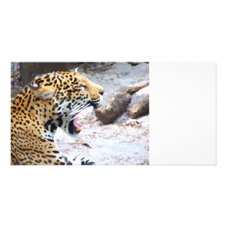 Spotted Jaguar painted image Customized Photo Card