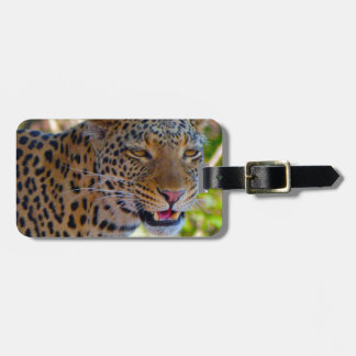 Spotted Leopard Luggage Tag