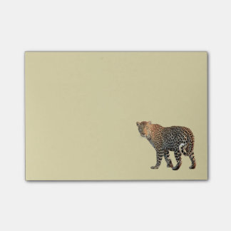 Spotted Leopard Wild Cat Photograph Post-it® Notes