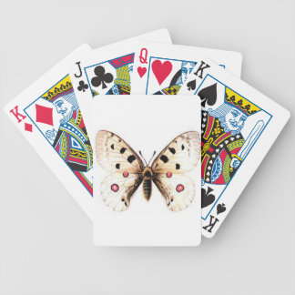 Spotted moth bicycle playing cards