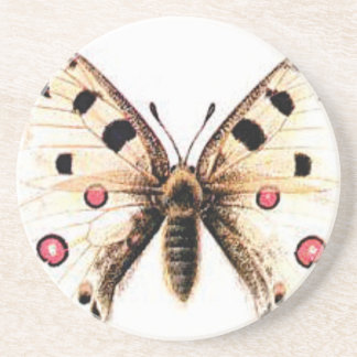Spotted moth coaster