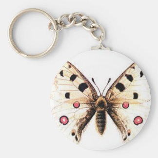 Spotted moth keychain