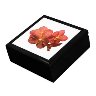Spotted Orange Orchid Gift Box