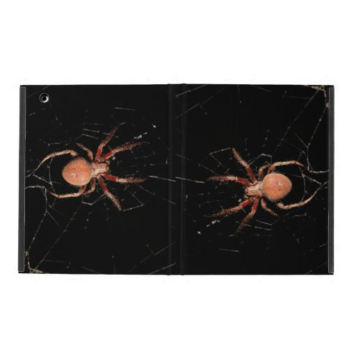 Spotted Orb Weaver Spider iPad Folio Cases