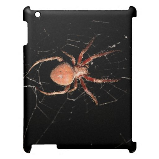 Spotted Orb Weaver Spider iPad Covers
