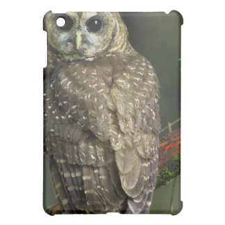 Spotted Owl iPad Case