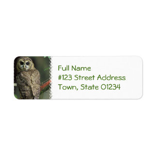 Spotted Owl Mailing Label