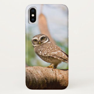 Spotted owl on morning flight. iPhone x case