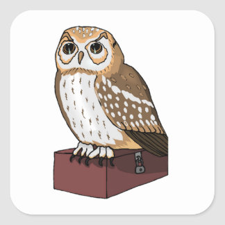 Spotted Owl Square Stickers